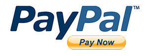 Image result for paypal pay now